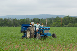 Interseeding Cover Crops